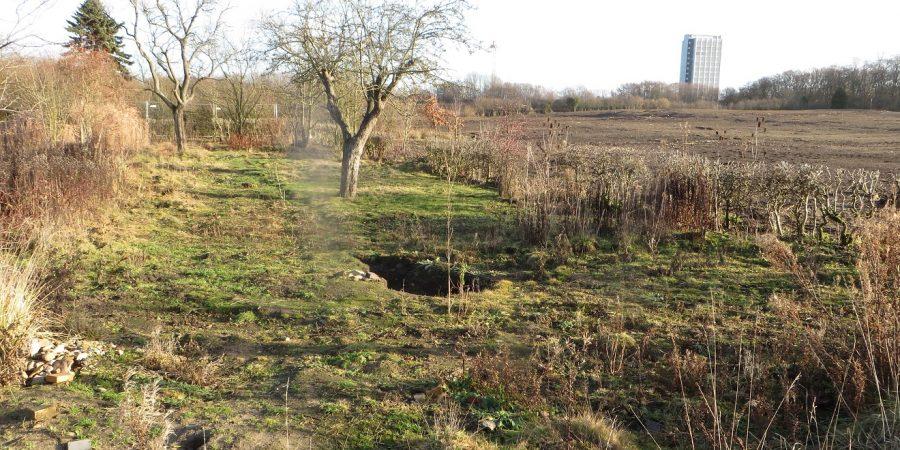 ehemalige Kleingärten auf dem Prüner Schlag
