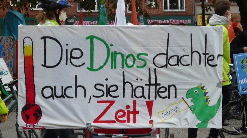 Klimastreik in Kiel